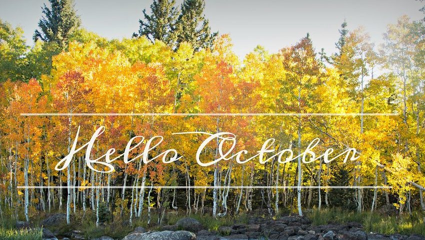 Stammtisch Οκτωβρίου και καλωσόρισμα νεοαφιχθέντων